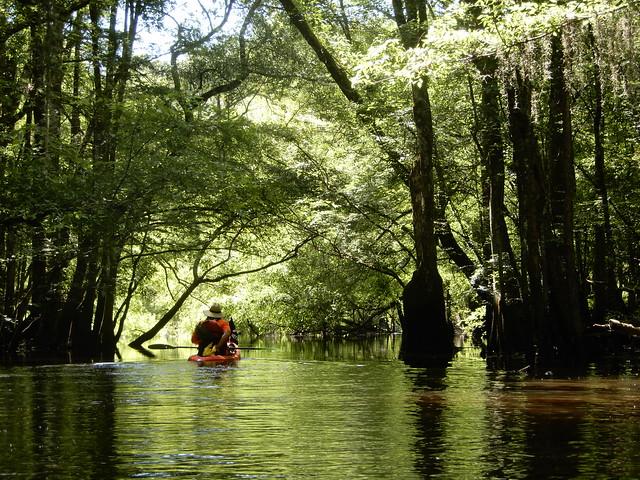 Edito River