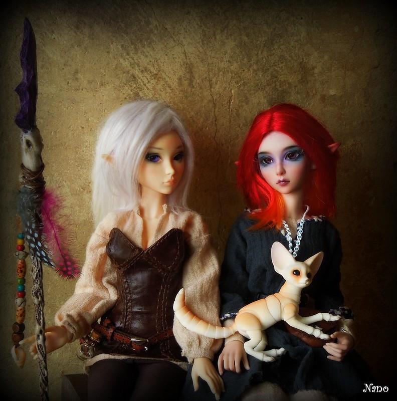 Ma petite famille de BJD (Souldoll, Fairyland, Raccoon doll) - Page 38 48073219496_dea68e8054_c