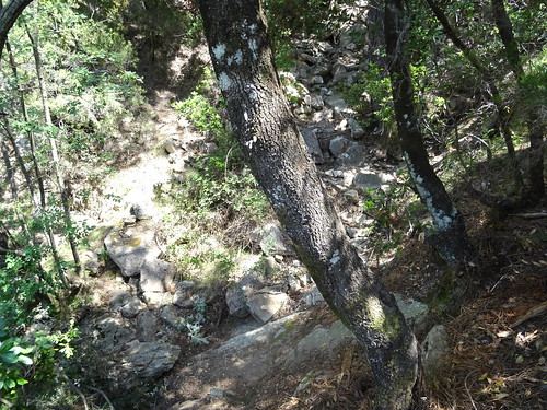 Traversée du ruisseau affluent du Peralzone : le lit du ruisseau en bas