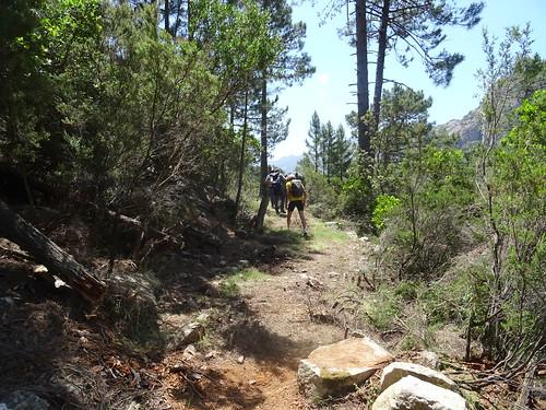 Le chemin de Paliri avant le ruisseau affluent du Peralzone