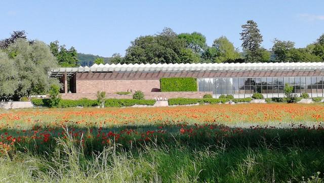 renzo piano's beyeler museum