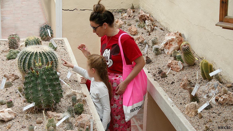 jardín botánico Valencia