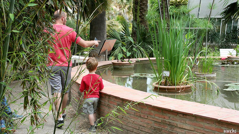 jardín botánico Valencia con niños