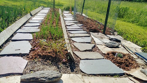 Row Garden - Slate from Patio Demo