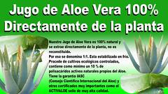 Propiedades y uso del Jugo Aloe Vera Puro 100% Natural