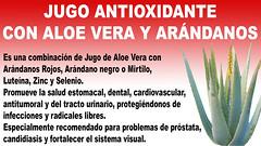 Jugo Antioxidante con Aloe vera y Arándanos