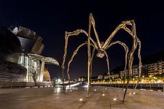 Una araña en el museo