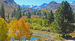 Early Autumn, Bishop Creek Canyon, Sierra Nevada 2018