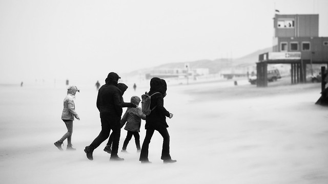 Windy and rainy beach of Noord-Holland - monochrome