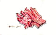 Pink Gardener's Gloves