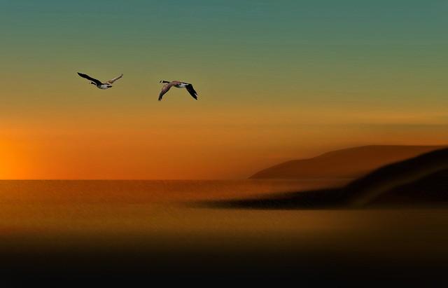Green Sunset v2