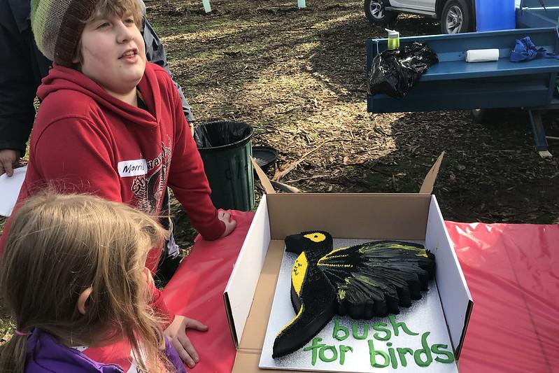 Bush for Birds project start