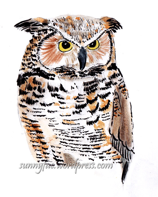 sketch great horned owl