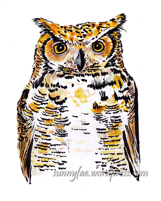 sketch great horned owl 2