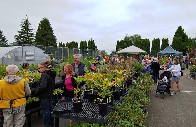 Plant sale and raffle at the arboretum