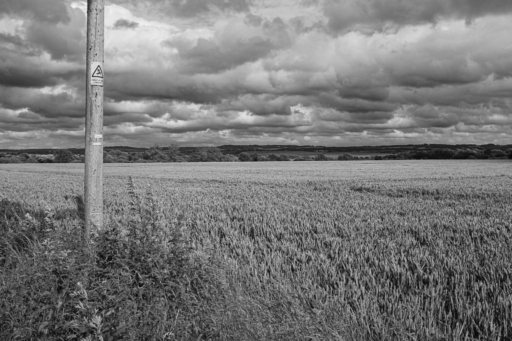 Pole in a field