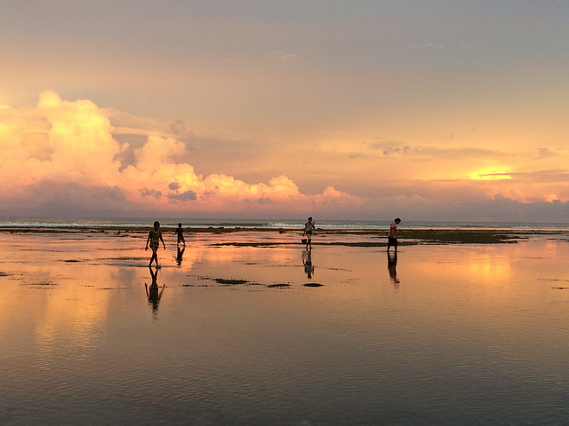 Children glean the exposed reef at low tide in Adarai on Timor-Leste's southern coast. Photo by Alex Tilley
