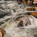 Panther Creek Whitewater - Idaho