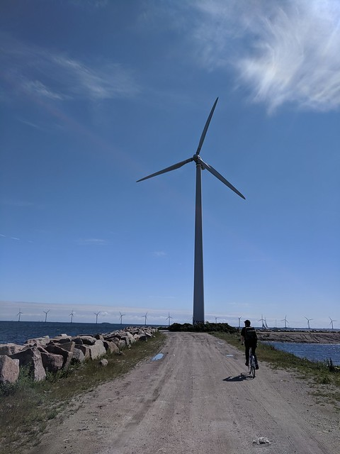 Biking to the wind turbines in Refshaleøen