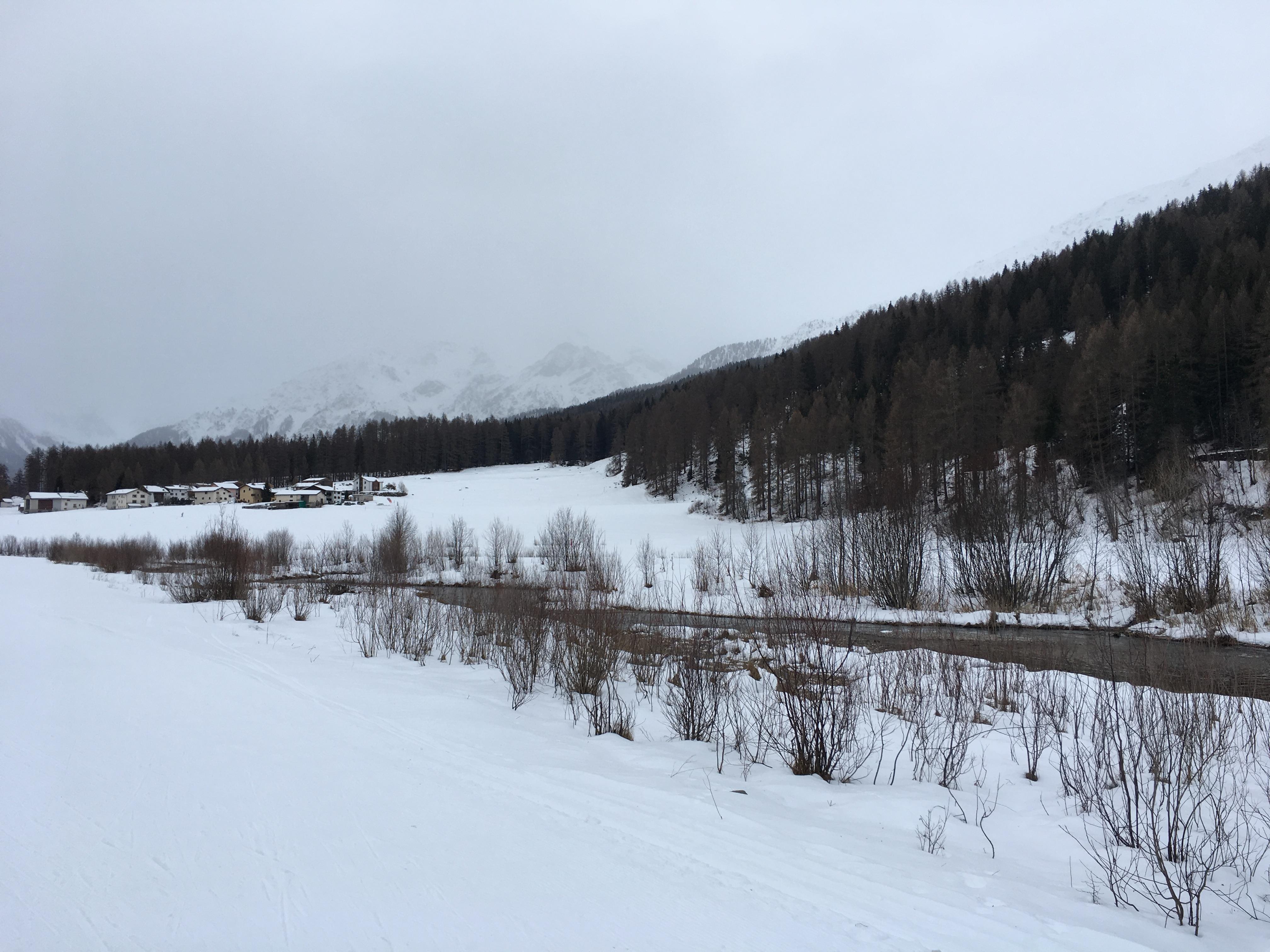 Langlauflager 2018