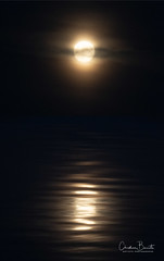 Lune enuL/Moon nooM/Måne enåM/Love evoL