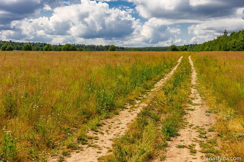 Полевая дорога