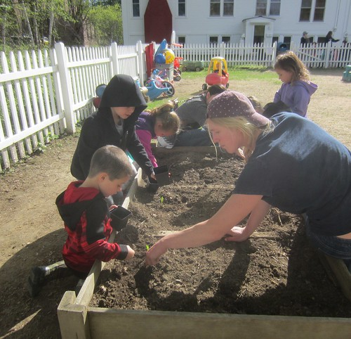 planting corn and beans