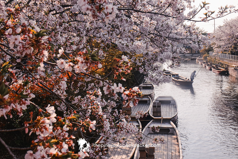 FUKUOKA - YANAGAWA RIVER