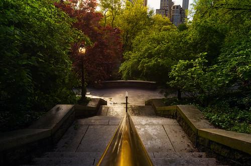 park central sunrise ny city urban light stairs colors beautiful calm quiet parque newyork