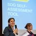 Waking the Giant - SDG self-assessment tool