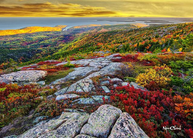 Acadia National Park, Main