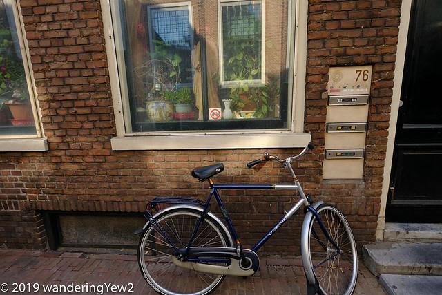 Europe2019_Haarlem-0587