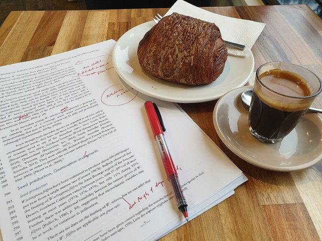 Start to the day...  pain au chocolat, espresso...and a manuscript to revise..