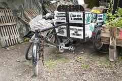 Cannabis Bicycle