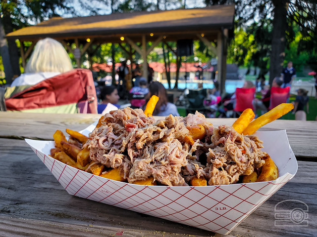 Pulled Pork on Fries - Good Eats Mountain State