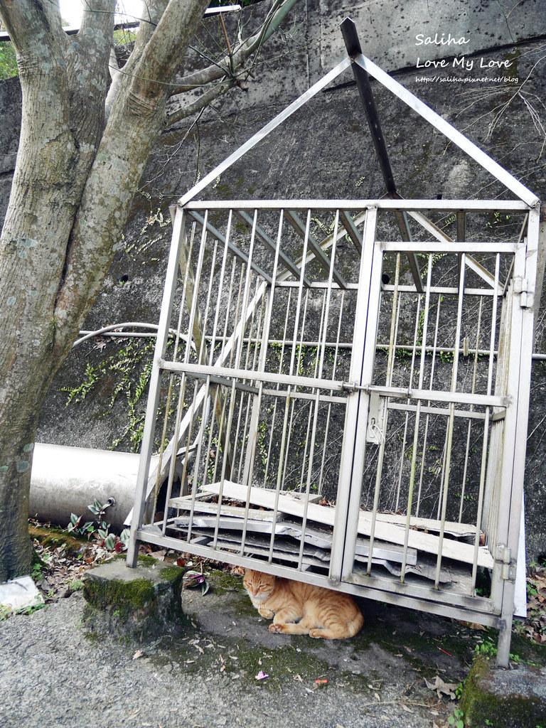 猴硐貓村一日遊景點小吃 (8)