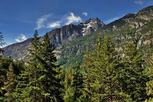 Trees and Mountains (North Cascades National Park Service Complex)