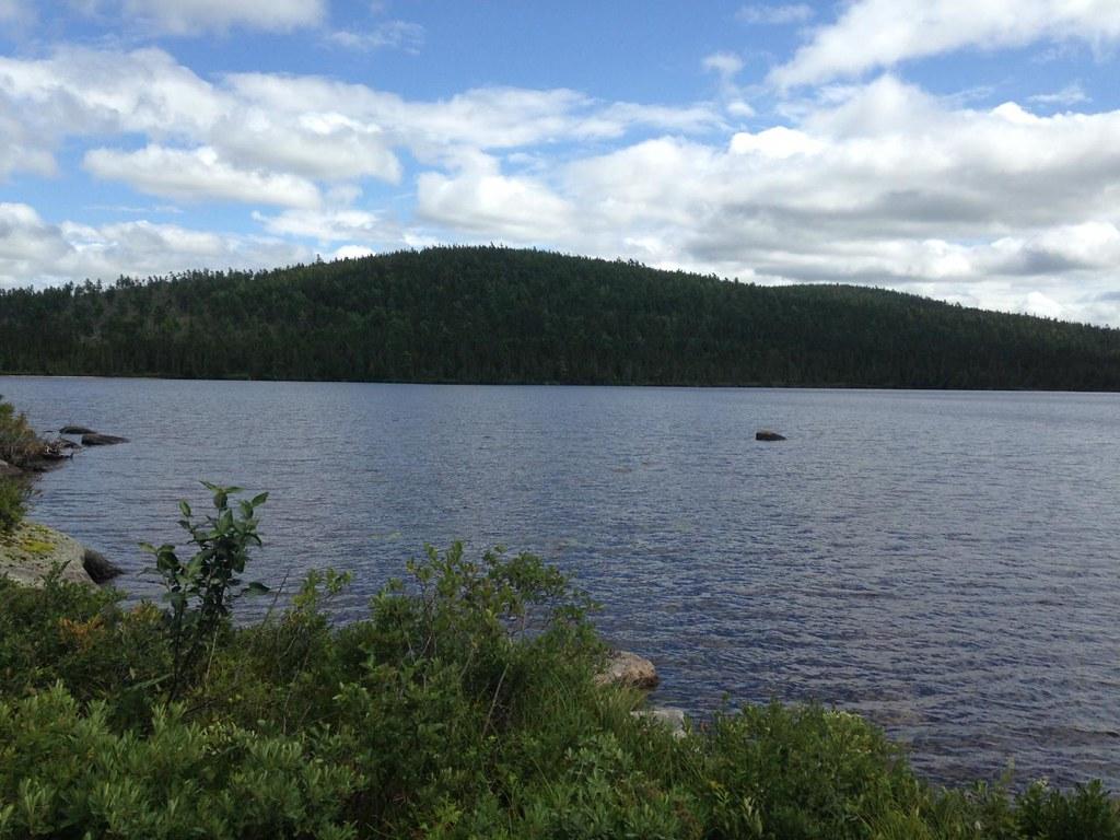 施用於森林的DDT被沖到偏遠的湖泊中。圖為研究採樣的湖泊之一。圖片提供:Josh Kurek