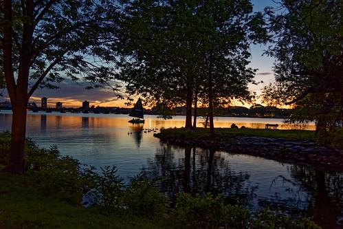 brooks brooksbos boston river sunset charlesriver ducks sailboat water trees
