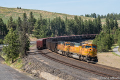 BNSF 8817 West at Scribner, WA