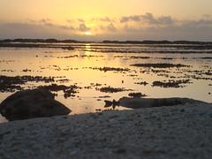 Sunset- Tonga