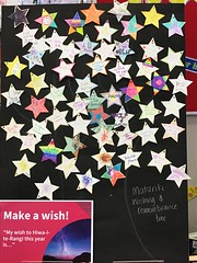 Wishing tree with stars, Redwood Library