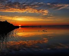 Solbjerg lake