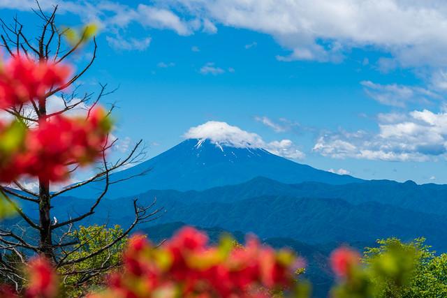 富士の雲はとれそうもない・・・@ハンゼノ頭