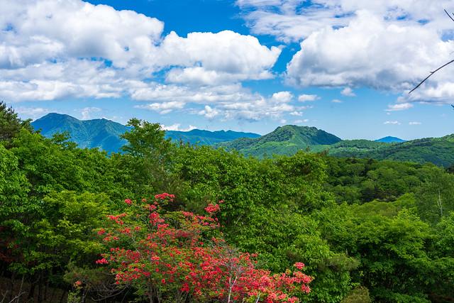 飛龍山、鶏冠山・・・御前山も見える