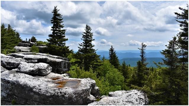 Dolly Sod Wilderness @ West Virginia