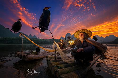 Cormorant Fisherman on Li River