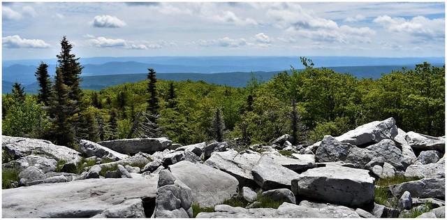 Dolly Sod Wilderness, West Virginia