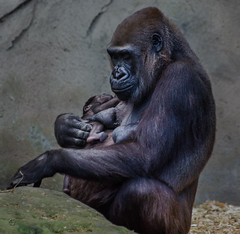 Mother and Child II