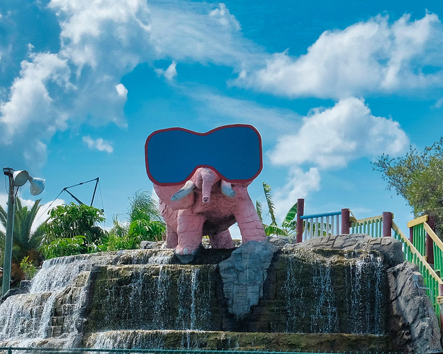 The Pink Elephant in the Room